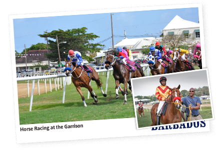 Horse Racing – The Barbados Turf Club