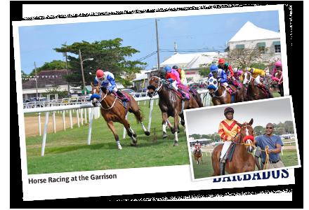 Horse Racing – The Barbados Turf Club